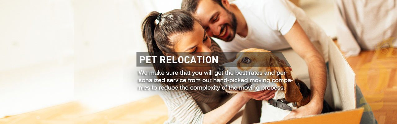 Relocation Company in Qatar