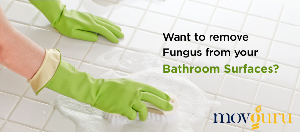 Want to Remove Fungus from Your Bathroom Surfaces?